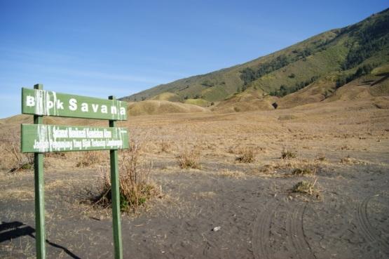 Bukit Savana Bromo