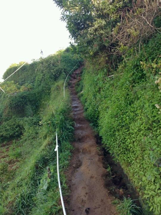 Jalur yang kami lewati di Patak Kalilembu